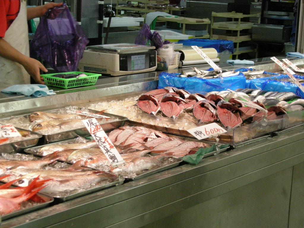 場 魚類 日野 角